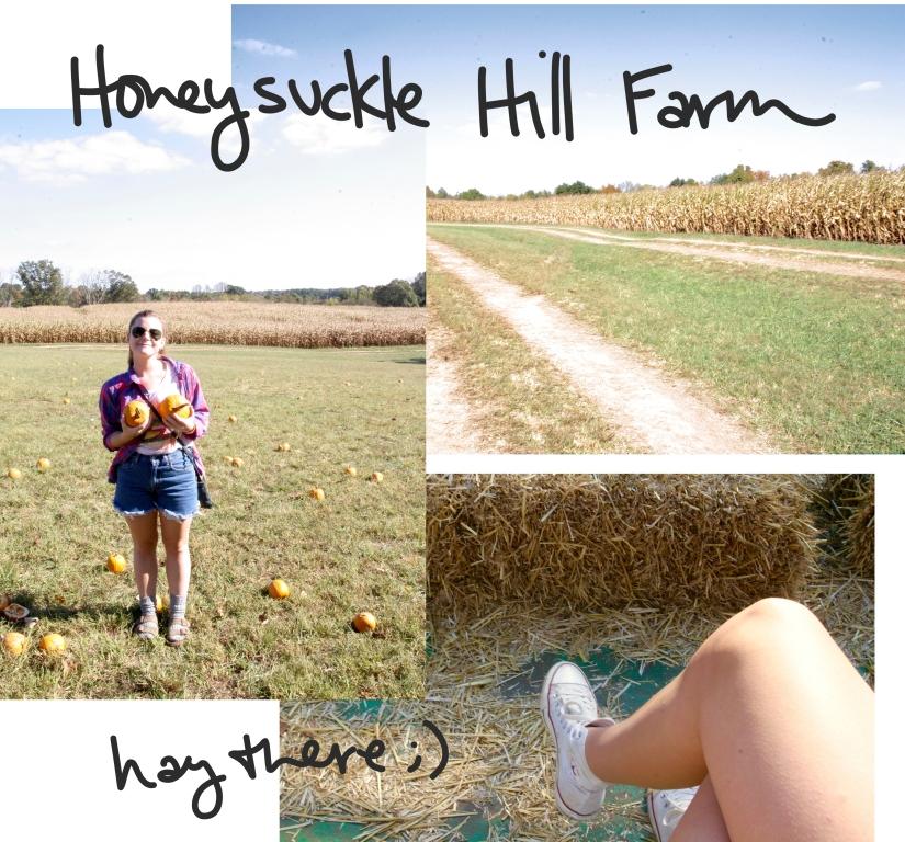 honeysuckle hill update.jpg